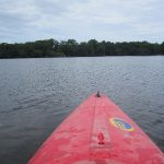 Kayaking the Cocoa Lagoon