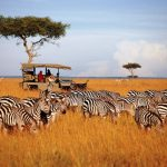 Top Ten Tuesdays – Things to Do in Kenya