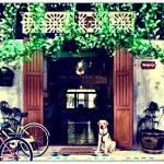 Best Hostels for Backpackers in Bangkok